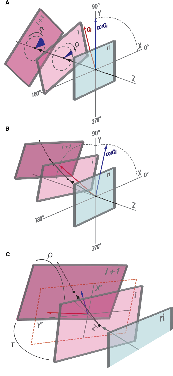 Figure 1 from 3d dart a dna structure modelling server semantic one block per base pair calladindrew plot of dna illustrating ccuart Gallery