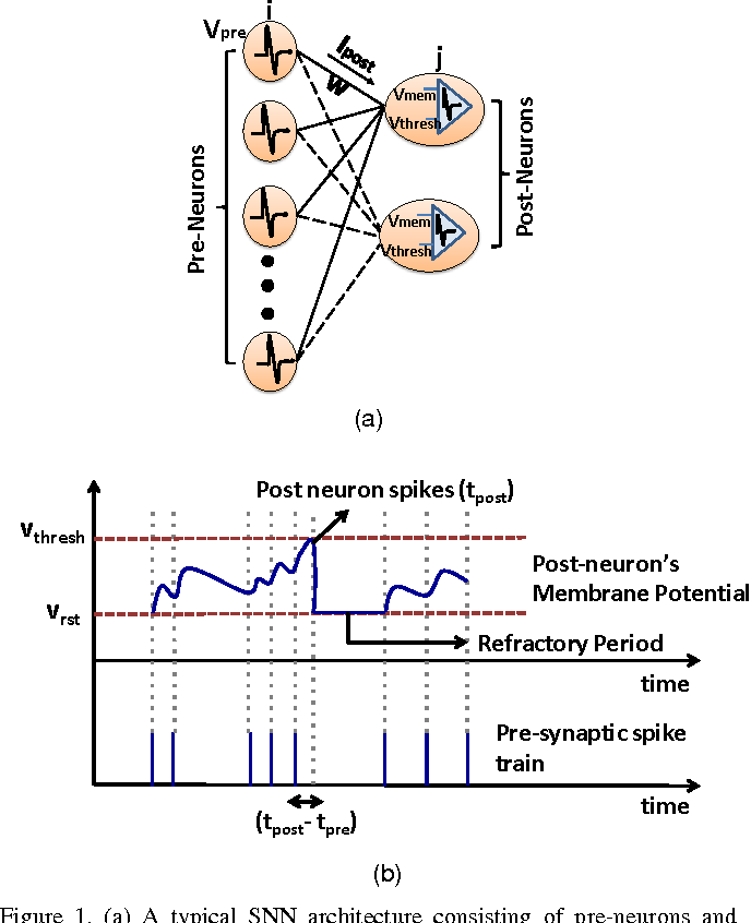 Figure 1 for ASP: Learning to Forget with Adaptive Synaptic Plasticity in Spiking Neural Networks