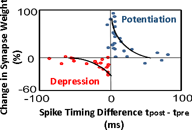 Figure 3 for ASP: Learning to Forget with Adaptive Synaptic Plasticity in Spiking Neural Networks