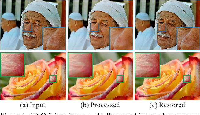 Figure 1 for Zero-order Reverse Filtering