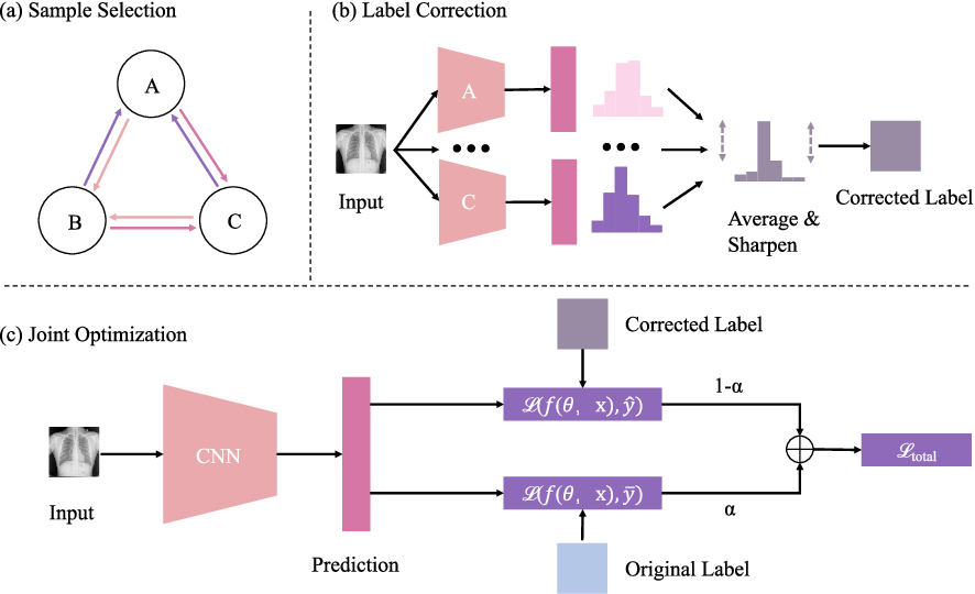 Figure 1 for Cascaded Robust Learning at Imperfect Labels for Chest X-ray Segmentation