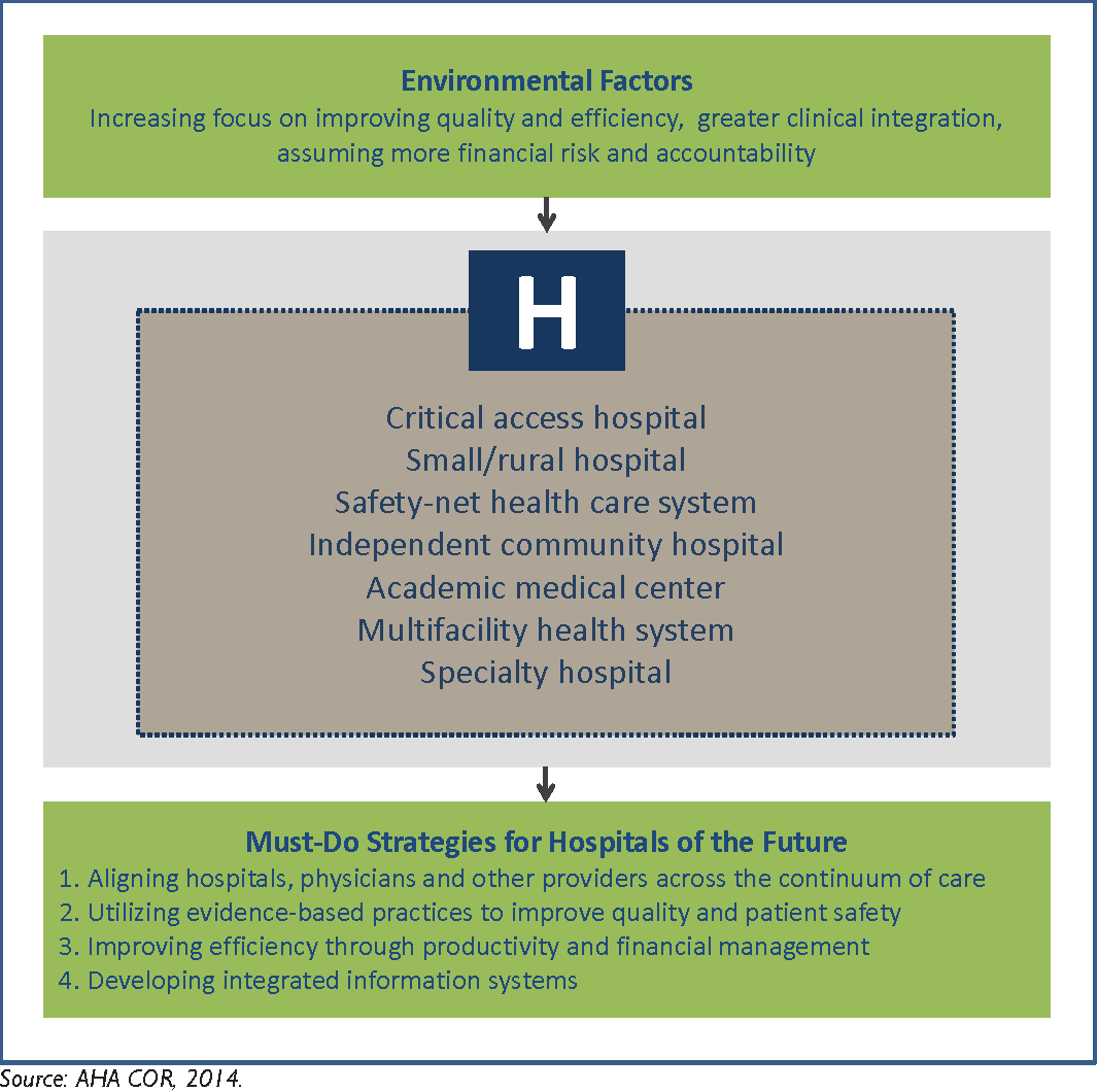 risk safety and clinical practice healthcare through the lens of risk