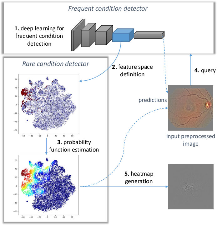 Figure 1 for Automatic detection of multiple pathologies in fundus photographs using spin-off learning