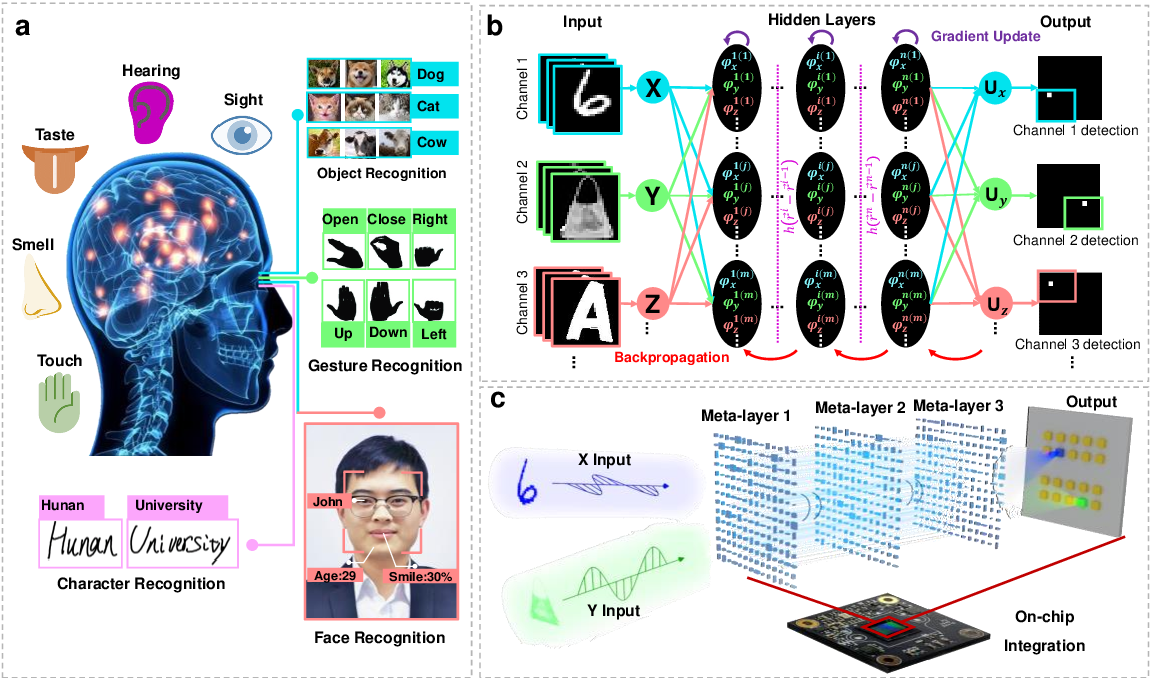 Figure 1 for Metasurface-Enabled On-Chip Multiplexed Diffractive Neural Networks in the Visible