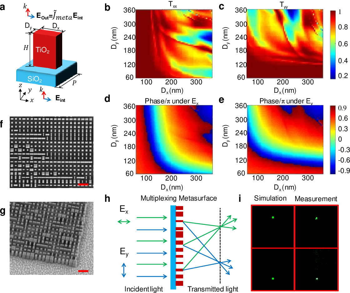 Figure 2 for Metasurface-Enabled On-Chip Multiplexed Diffractive Neural Networks in the Visible