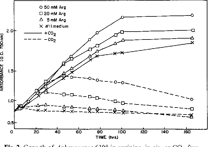 Fig. 2. Growth of Aphanocapsa 6308 in arginine, in air, or CO2-free air. Growth was measured as culture density in side arm flasks at 25 ~ C and 3240 lux