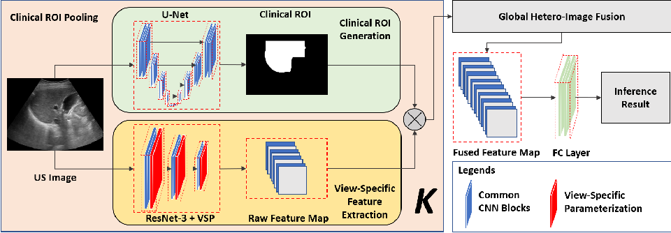 Figure 1 for Reliable Liver Fibrosis Assessment from Ultrasound using Global Hetero-Image Fusion and View-Specific Parameterization