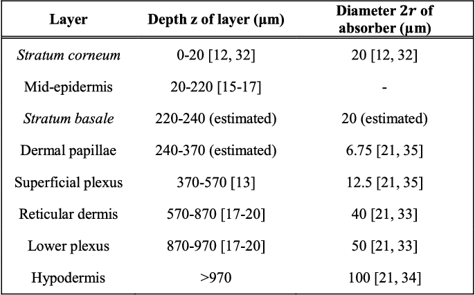 TABLE I DEPTH OF LAYERS AND DIAMETERS OF MAIN ABSORBERS OF THE HUMAN PALM SKIN. VALUES WERE COMPILED