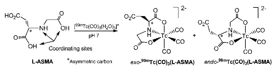 FIGURE 2. Preparation of 2 diastereomers of 99mTc(CO)3(L-ASMA).