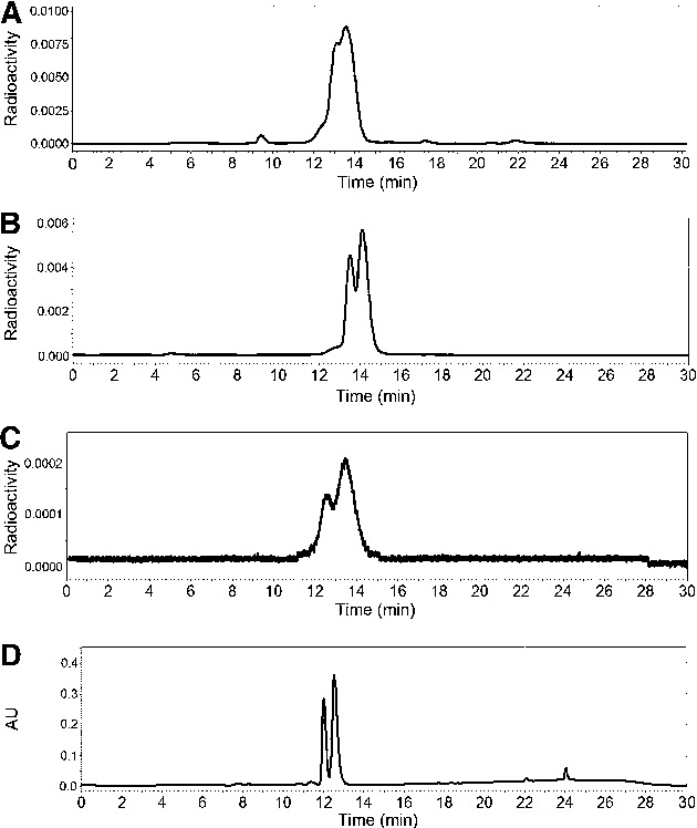 FIGURE 3. HPLC of 99mTc(CO)3(L-ASMA): labeling mixture (A), before injection (B), in urine at 15 min after injection (C), and ultraviolet trace (254 nm) of Re(CO)3(L-ASMA) (D). AU 5 absorbance units.