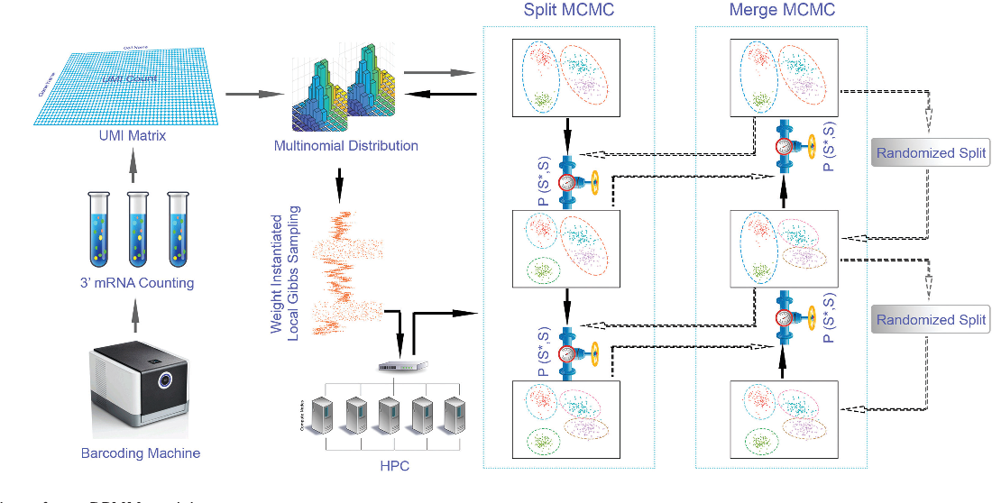Figure 1 for Parallel Clustering of Single Cell Transcriptomic Data with Split-Merge Sampling on Dirichlet Process Mixtures