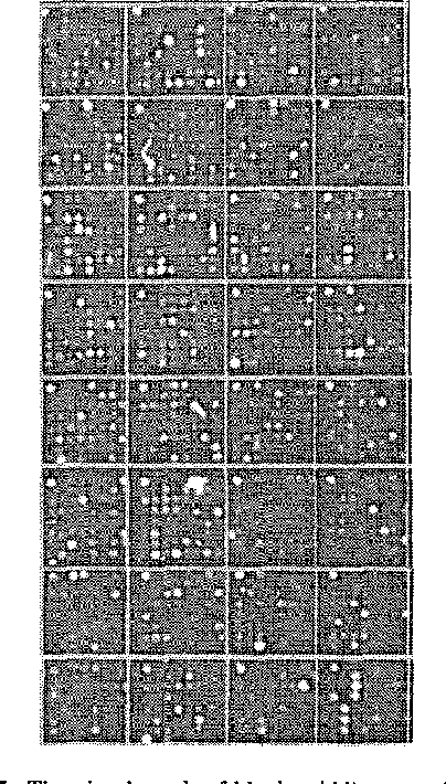 Fig. 7: The visual result of block gridding accoding to the proposed method.