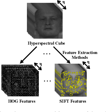 Figure 1 for Image-level Classification in Hyperspectral Images using Feature Descriptors, with Application to Face Recognition