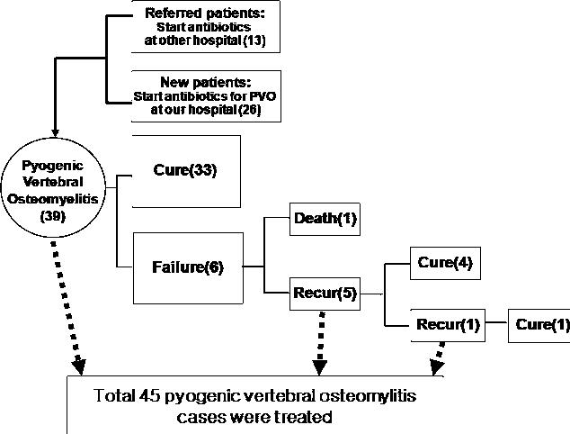 Figure 1 from Pyogenic vertebral osteomyelitis