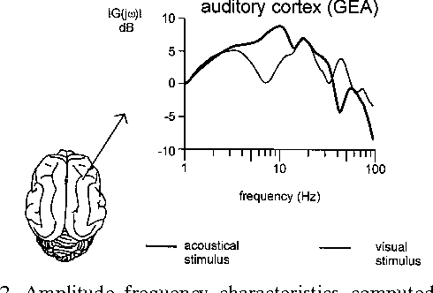 Figure 6 from event related oscillations are real brain responses figure 2 ccuart Gallery