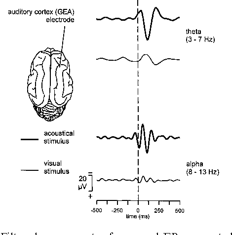 Figure 6 from event related oscillations are real brain responses figure 3 ccuart Gallery