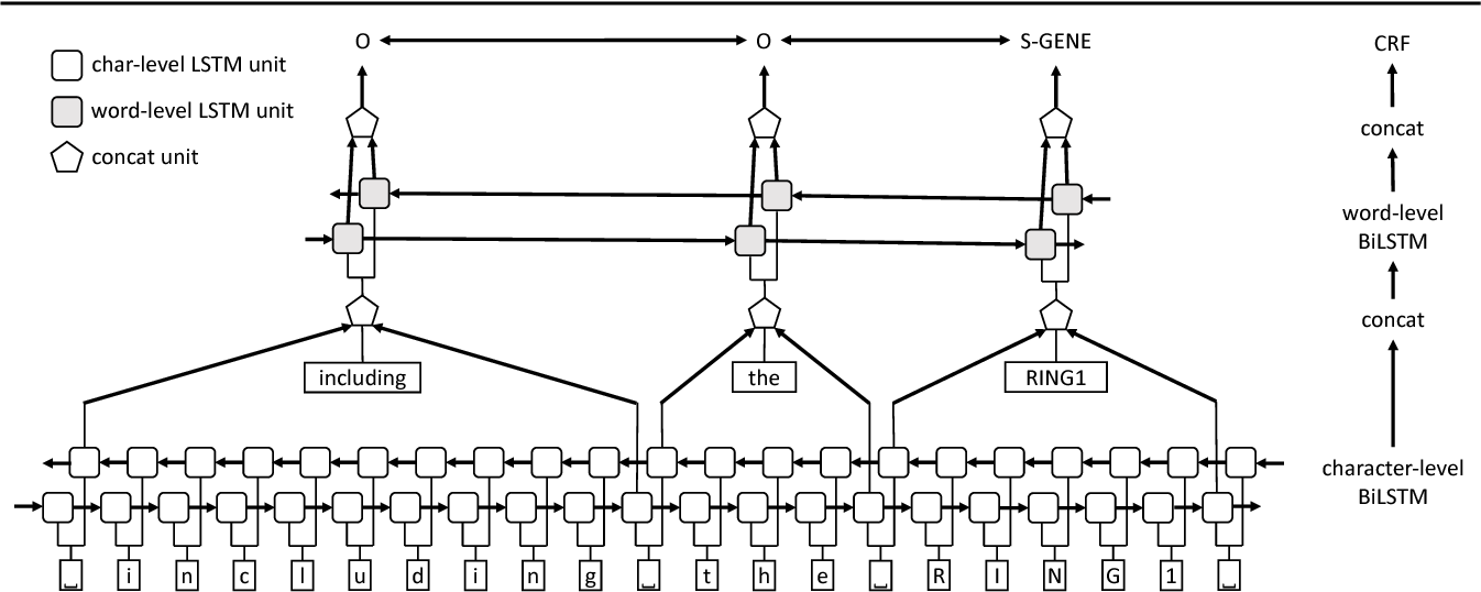 Figure 2 for Cross-type Biomedical Named Entity Recognition with Deep Multi-Task Learning