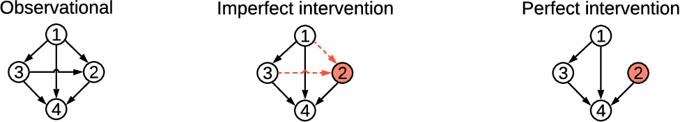 Figure 1 for Differentiable Causal Discovery from Interventional Data