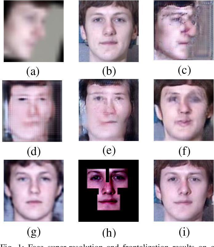 Figure 1 for Face Hallucination with Finishing Touches