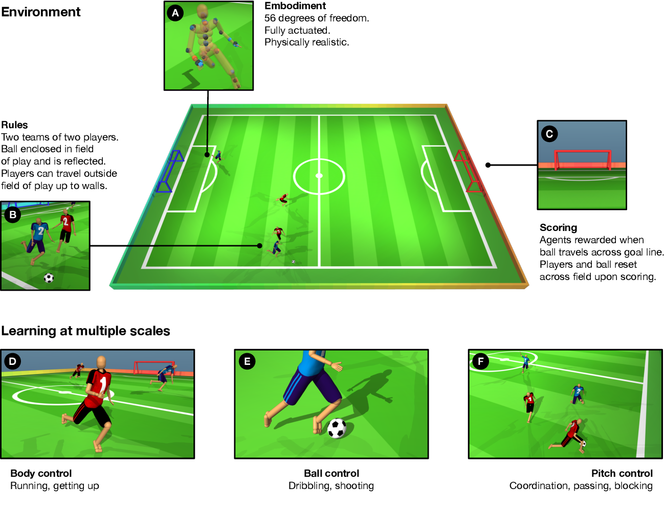 Figure 1 for From Motor Control to Team Play in Simulated Humanoid Football