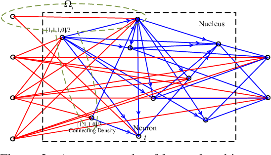 Figure 3 for Nucleus Neural Network: A Data-driven Self-organized Architecture