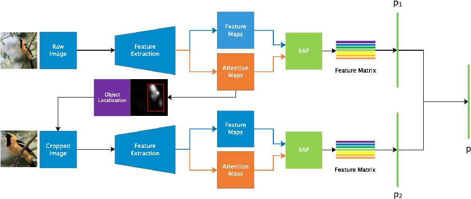 Figure 3 for Weakly Supervised Local Attention Network for Fine-Grained Visual Classification