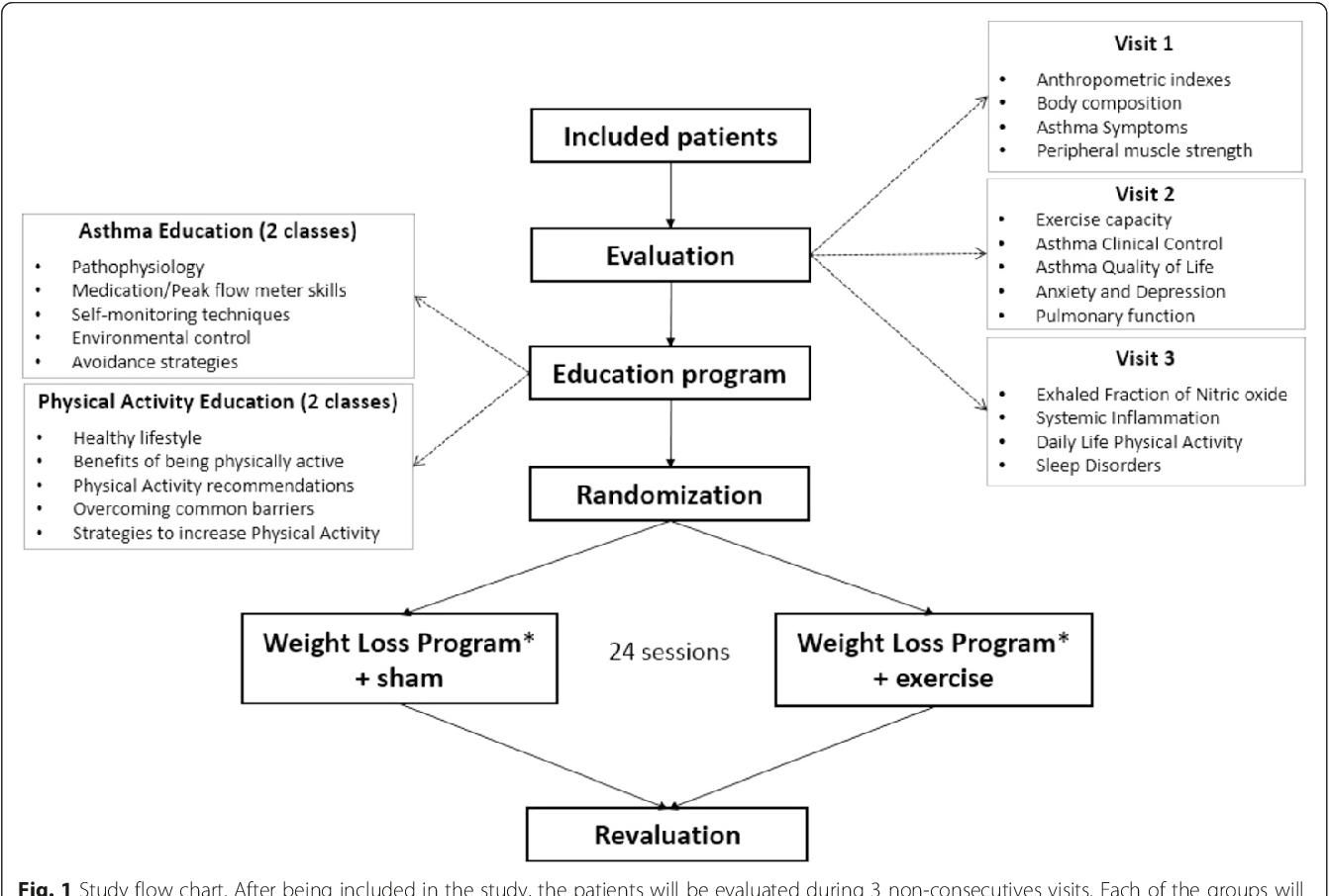 The effects of exercise training in a weight loss lifestyle figure 1 geenschuldenfo Gallery