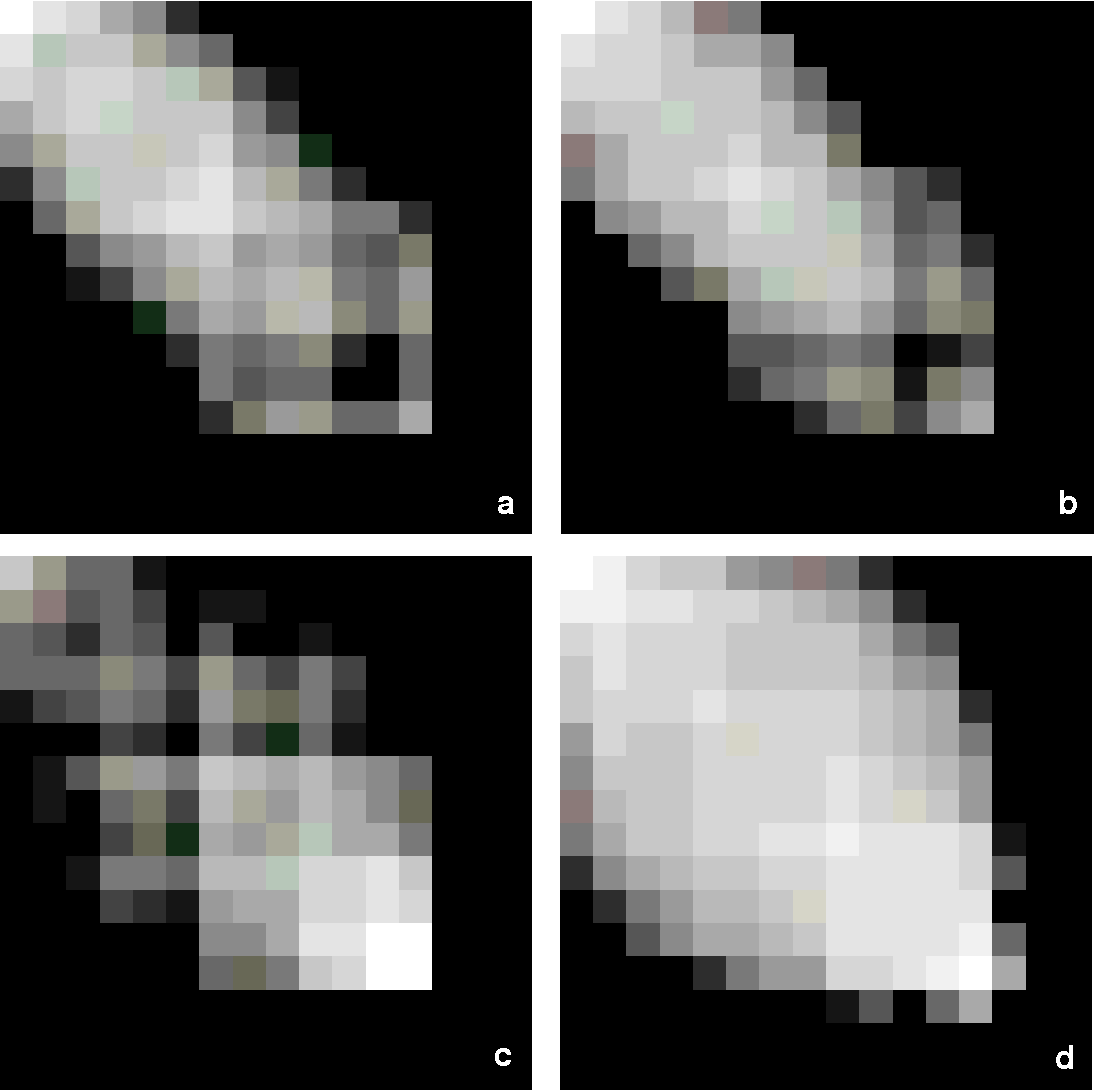 FIG. 11. Images of the co-occurrences matrices of (a) D17A; (b) D17B; (c) D4A; (d) D4C. The images were created by converting the co-occurrences matrix from a 256 3 256 matrix into a 16 3 16 matrix where each new entry contains the sum of the 16 3 16 corresponding original entries. Then the log value of each new entry was taken, and finally, the 16 3 16 log-values were linearly stretched to fit the gray-levels 0–255.
