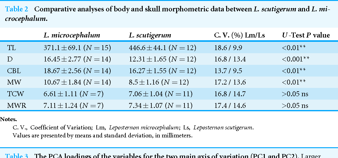 Table 2 Comparative analyses of body and skull morphometric data between L. scutigerum and L. microcephalum.