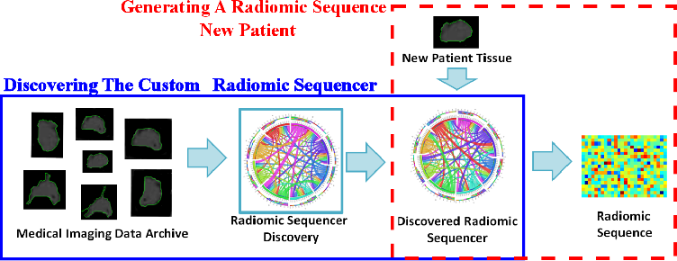 Figure 1 for Discovery Radiomics via StochasticNet Sequencers for Cancer Detection