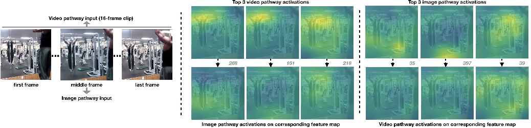 Figure 4 for UniDual: A Unified Model for Image and Video Understanding