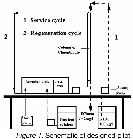 Figure 1. Schematic of designed pilot