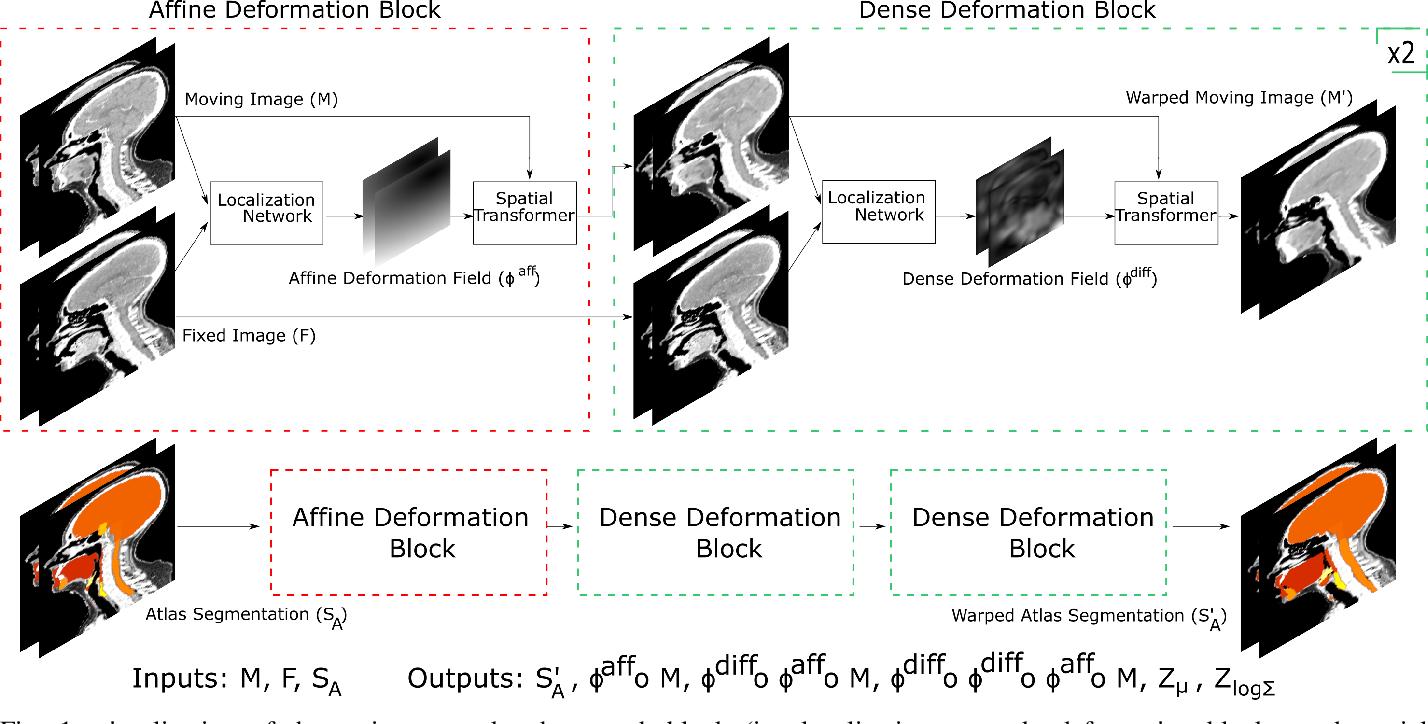 Figure 1 for Atlas Based Segmentations via Semi-Supervised Diffeomorphic Registrations
