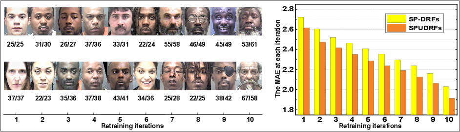 Figure 3 for Self-Paced Deep Regression Forests with Consideration on Underrepresented Samples