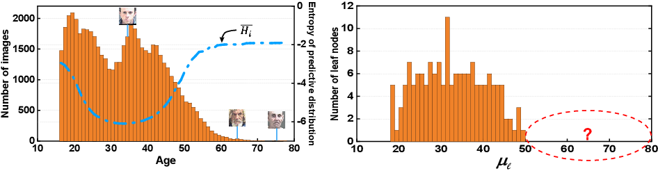Figure 2 for Self-Paced Deep Regression Forests with Consideration on Underrepresented Samples