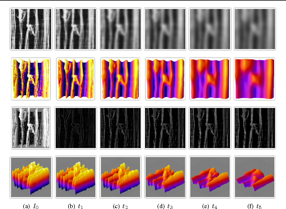 Figure 1 for Image decomposition with anisotropic diffusion applied to leaf-texture analysis