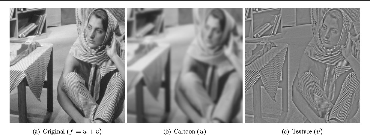 Figure 3 for Image decomposition with anisotropic diffusion applied to leaf-texture analysis
