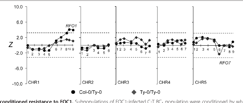 Figure 8 RFO7-conditioned resistance to FOC1. Subpopulations of FOC1-infected C-T BC1 population were conditioned by whether BC1 hybrids inherited RFO7-C (C/T, circle) or not (T/T, diamond). See Figure 4 for description of plot details.