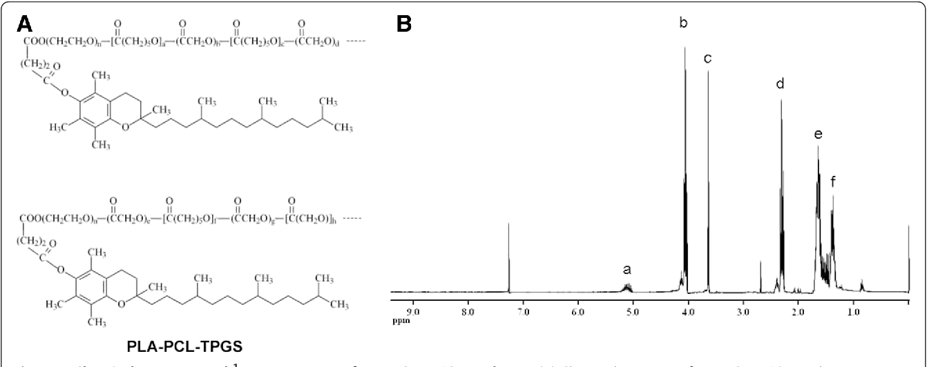 Thiolated chitosan-modified PLA-PCL-TPGS nanoparticles for