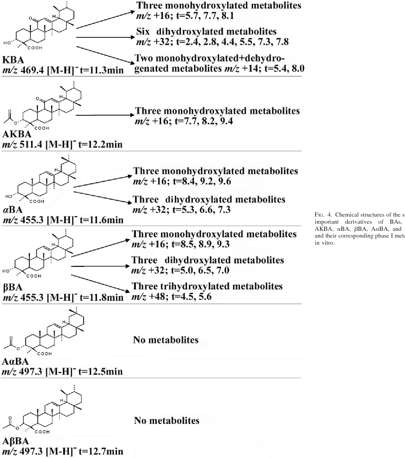 Figure 4 from Metabolism of boswellic acids in vitro and in