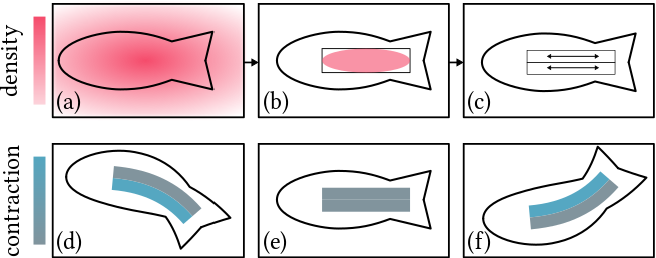 Figure 4 for DiffAqua: A Differentiable Computational Design Pipeline for Soft Underwater Swimmers with Shape Interpolation