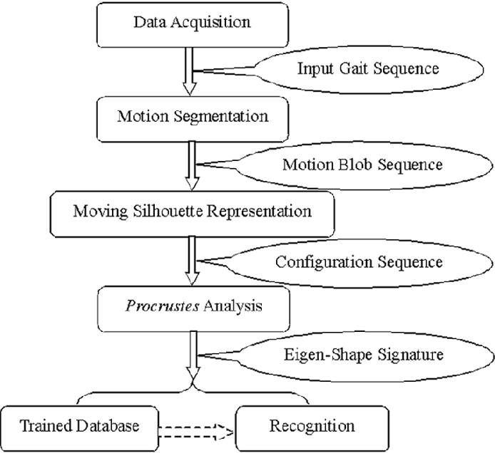Fig. 1. Overview of the proposed method.