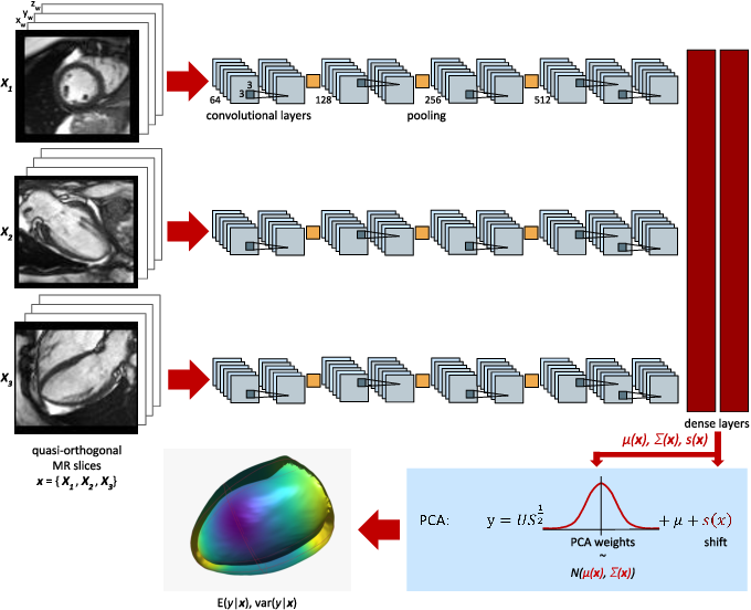 Figure 1 for Probabilistic 3D surface reconstruction from sparse MRI information