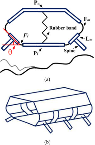Fig. 3. (a) Basic gripping structure. (b) Multiple segments.