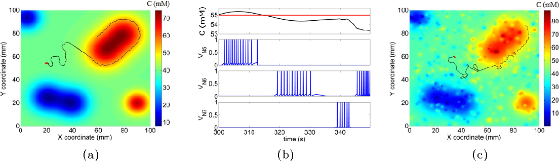 Figure 3 for Sub-threshold CMOS Spiking Neuron Circuit Design for Navigation Inspired by C. elegans Chemotaxis