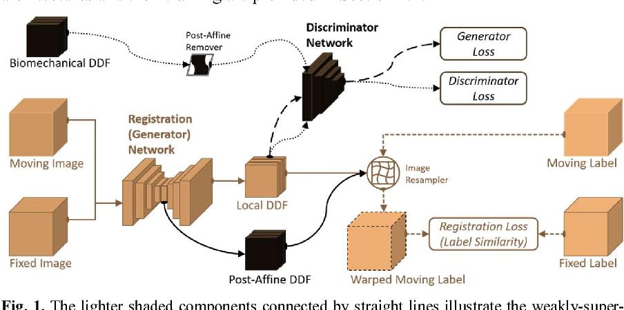 Figure 1 for Adversarial Deformation Regularization for Training Image Registration Neural Networks