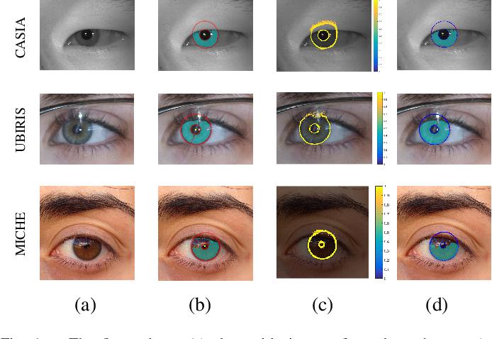 Figure 1 for Joint Iris Segmentation and Localization Using Deep Multi-task Learning Framework