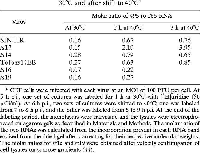 Table 3 from synthesis : role of the nsP 2 protein   convert from