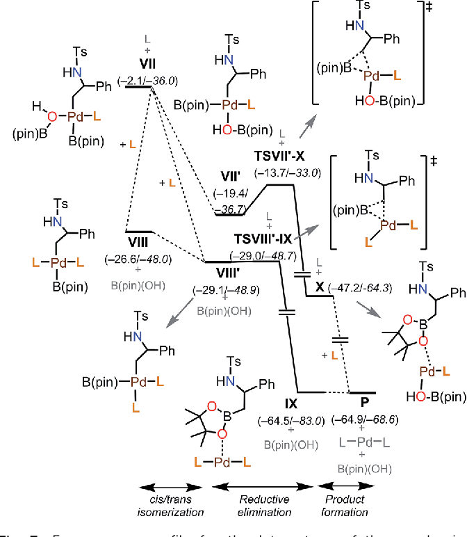 Palladium Catalyzed Regioselective And Stereo Invertive Ring Opening