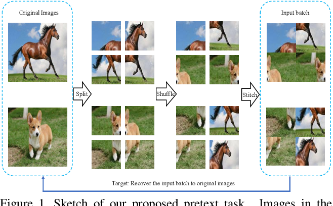 Figure 1 for Jigsaw Clustering for Unsupervised Visual Representation Learning
